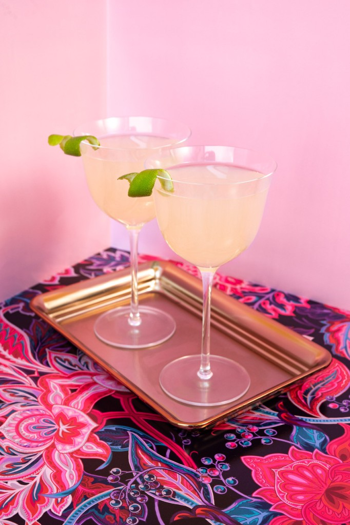 Picture of Rhuby Gimlet cocktail